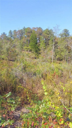 Photo of 0 County Road 40 W ., Prattville, AL 36067 (MLS # 443976)