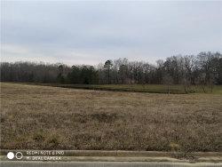 Photo of 250 Ridge Water Drive, Pike Road, AL 36064 (MLS # 444151)