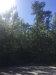 Photo of 0 Autumn Drive, Deatsville, AL 36022 (MLS # 444265)