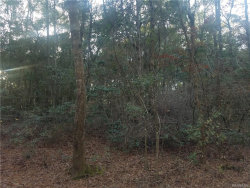 Photo of TBD Woodland Drive, Daleville, AL 36322 (MLS # 445110)