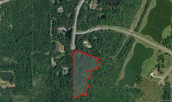 Photo of 7 PLANTATION Trail, Mathews, AL 36052 (MLS # 448139)