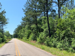 Photo of 2.33 Acres McDougald Street ., Geneva, AL 36340 (MLS # 452268)