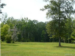 Photo of 150 Briar Lane, Pike Road, AL 36064 (MLS # 452712)