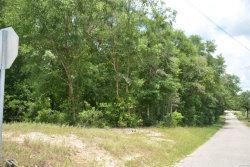 Photo of TBD Dale County 1 ., Level Plains, AL 36322 (MLS # 454286)
