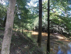 Photo of 00 SUNFLOWER ., Geneva, AL 36340 (MLS # 454709)
