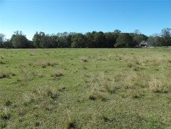Photo of 328 Private Road 1611 ., Chancellor, AL 36316 (MLS # 454899)