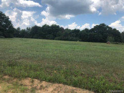 Photo of 2613 County Road 79 Road, Geneva, AL 36318 (MLS # 456873)