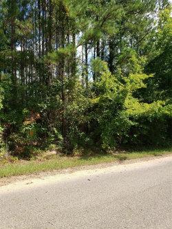 Photo of 0 Pink Lily Road, Prattville, AL 36067 (MLS # 459153)