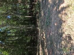 Photo of 49 Foxfire Lane, Wetumpka, AL 36092 (MLS # 460986)