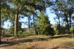 Photo of 192 Maloy Road, Daleville, AL 36322 (MLS # 463615)
