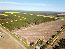 Photo of 327 acres County Road 57 ., Hartford, AL 36344 (MLS # 465671)