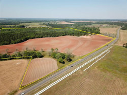 Photo of 150 acres E Highway 52 ., Hartford, AL 36344 (MLS # 470848)