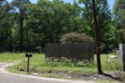 Photo of 154 Nathan Drive, Daleville, AL 36322 (MLS # 471722)