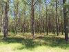 Photo of 2052 Robinson Pond Road, Prattville, AL 36067 (MLS # 472743)