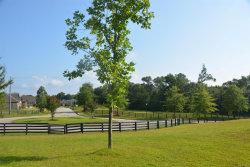 Photo of 399 Legends Trail, Enterprise, AL 36330 (MLS # 478301)