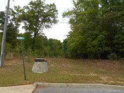 Photo of Lot 11 WILSHIRE Street, Geneva, AL 36340 (MLS # W20160919)