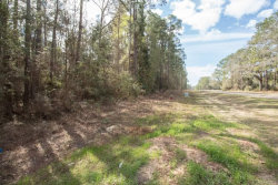 Photo of 000 WARD Street, Geneva, AL 36340 (MLS # W20180528)