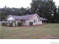 Photo of 1251 Cygnus Lane, Prattville, AL 36067 (MLS # 433740)