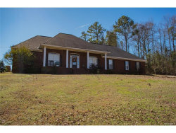 Photo of 415 Shady Nook Drive, Deatsville, AL 36022 (MLS # 405725)