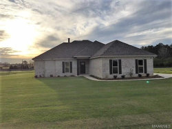 Photo of 21 Reagans Way, Deatsville, AL 36022 (MLS # 420751)