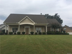 Photo of 1001 Ridge Point Drive, Deatsville, AL 36022 (MLS # 421048)