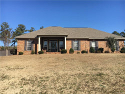 Photo of 3250 Little Road, Tallassee, AL 36078 (MLS # 428344)