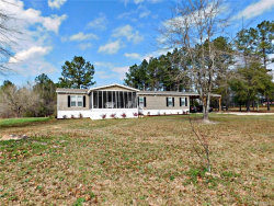 Photo of 1425 N ANN Street, Eclectic, AL 36024 (MLS # 429022)