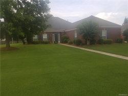 Photo of 36 Cotton Terrace Loop, Deatsville, AL 36022 (MLS # 435773)