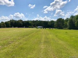 Photo of 797 Rosewood Road, Samson, AL 36477 (MLS # 436222)