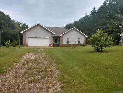 Photo of 56 PRIVATE ROAD 1702 ., Daleville, AL 36322 (MLS # 438273)