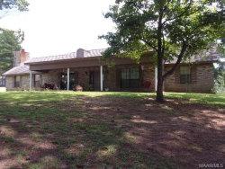 Photo of 100 Michelle Court, Daleville, AL 36322 (MLS # 438888)
