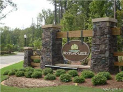 Photo of 9242 CRESCENT LODGE Circle, Pike Road, AL 36064 (MLS # 439137)