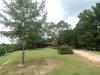 Photo of 2289 W Gantts Mill Road, Tallassee, AL 36078 (MLS # 439959)