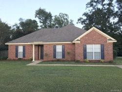 Photo of 266 Ridgeview Drive, Millbrook, AL 36054 (MLS # 440441)