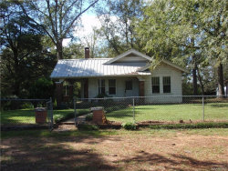 Photo of 10 S ELLIS LAZENBY Road, Eclectic, AL 36024 (MLS # 441905)