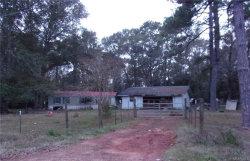 Photo of 1544 Gritney Road, Daleville, AL 36322 (MLS # 447572)
