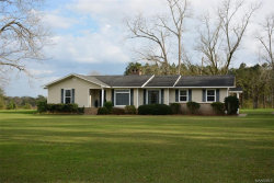Photo of 1653 County Road 520 ., New Brockton, AL 36351 (MLS # 449556)