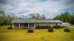 Photo of 6463 Co Rd 636 ., New Brockton, AL 36316 (MLS # 449679)