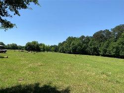 Photo of 1640 Chana Creek Road, Eclectic, AL 36024 (MLS # 452552)