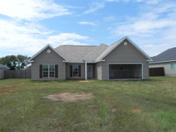 Photo of 160 Abigail Court, Daleville, AL 36322 (MLS # 458743)