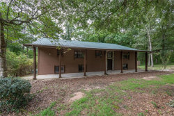Photo of 3158 County Road 5 ., Ariton, AL 36311 (MLS # 459418)