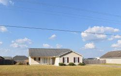 Photo of 211 Gritney Road, Daleville, AL 36322 (MLS # 462827)