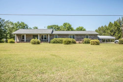 Photo of 6463 COUNTY ROAD 636, Chancellor, AL 36316 (MLS # W20181011)