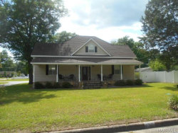 Photo of 101 N LIVEOAK Street, Geneva, AL 36340 (MLS # W20181022)