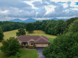 Photo of 1222 Lone Pine Terrace, Goode, VA 24556 (MLS # 325179)