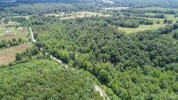 Photo of Dodson Drive, Rustburg, VA 24588 (MLS # 320150)
