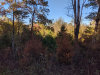 Photo of Kenmore Road, Amherst, VA 24521 (MLS # 321377)