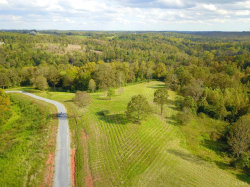 Photo of 1 Otter River Estates, Goode, VA 24556 (MLS # 321519)