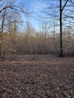 Photo of Lot 4 Isabel Acres, Lot 4, Madison Heights, VA 24572 (MLS # 323672)