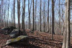 Photo of Decoration Street, Lot 8A, Goode, VA 24556 (MLS # 323913)